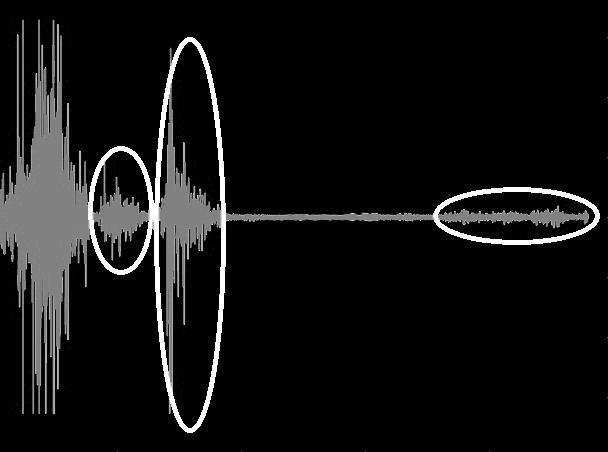 Abnormal Audio Detection
