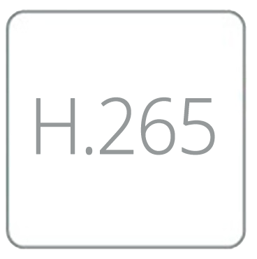 H265Icona.png